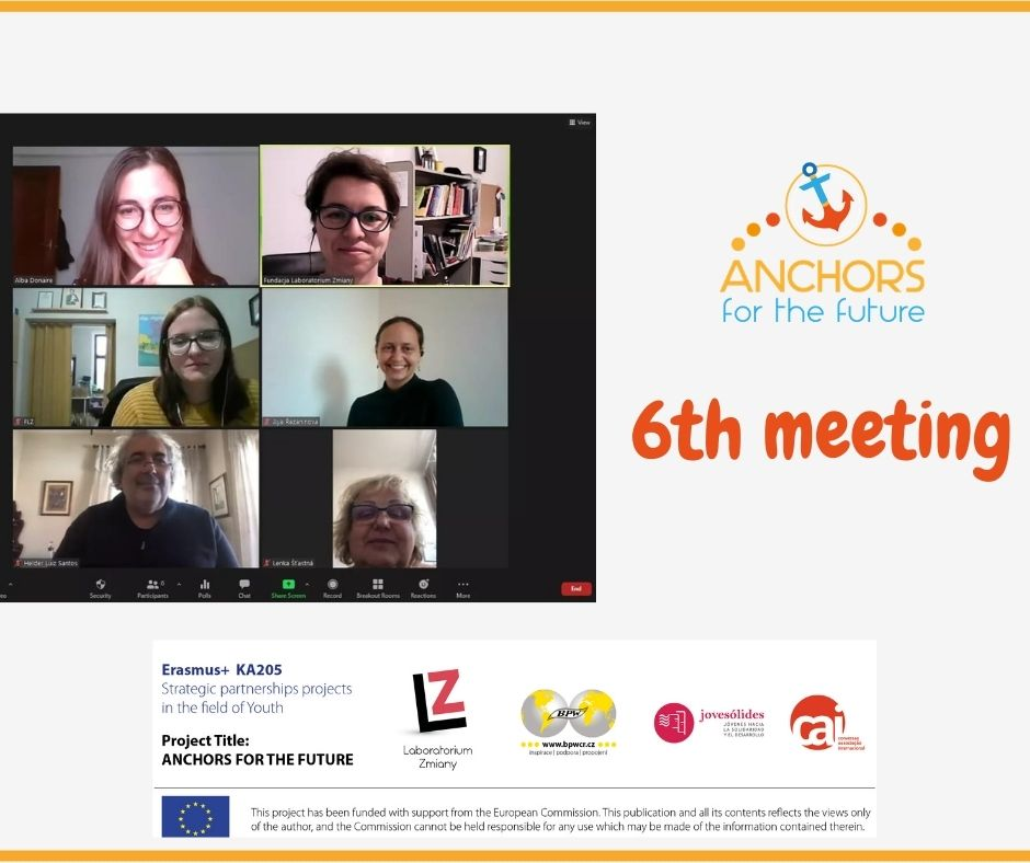 6th online meeting of partners